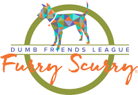 Paw School is a denver furry scurry sponsor